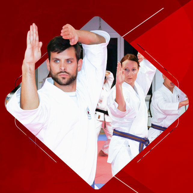 4-PROTECT-YOURSELF-AND-YOUR-FAMILY-WITH-MARTIAL-ARTS